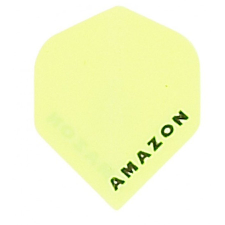 Amazon flight  Geel-1