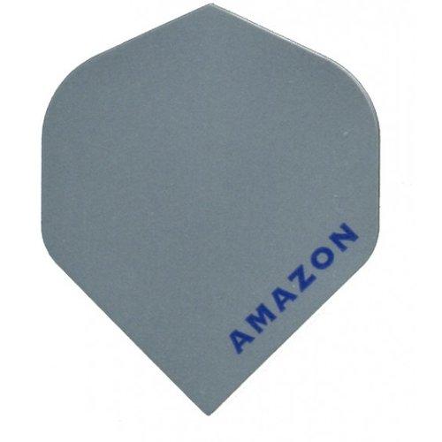 Amazon Amazon flight Zilver