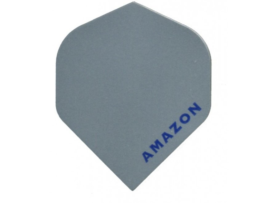 Amazon flight Zilver
