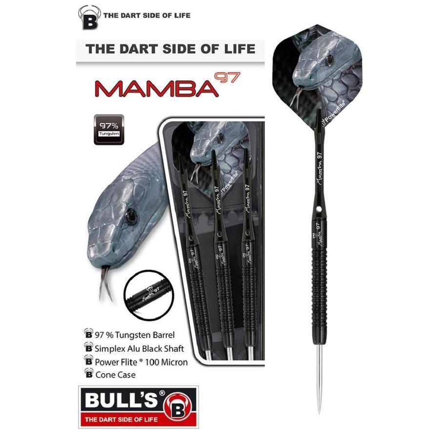 Mamba M2 97%-1