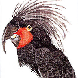 Borduurpatroon Palm Cockatoo