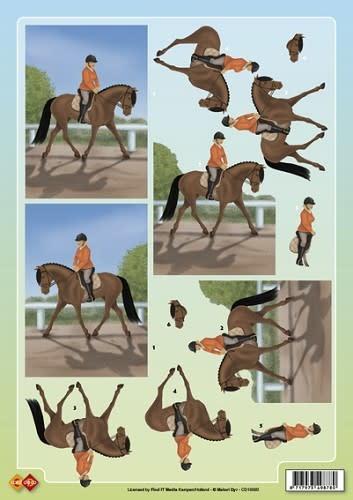 3D Knipvel - Paardrijden