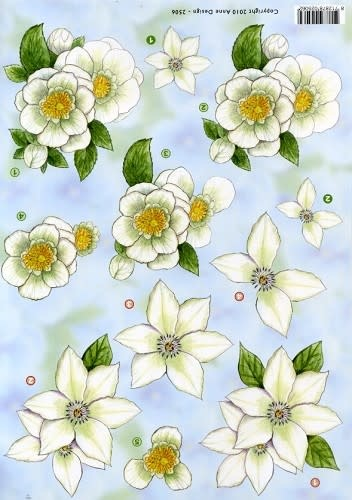 3D knipvel - Anne design - witte bloemen 2506