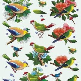 3D knipvel - voorbeeldkaarten - vogels kuif