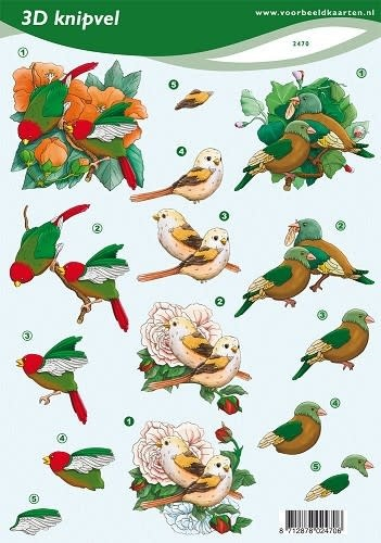 3D knipvel - voorbeeldkaarten - vogels