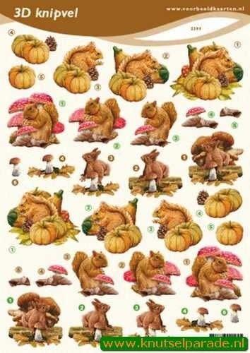 3d knipvel VBK herfst eekhoorn