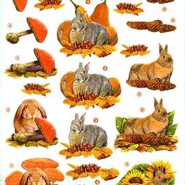 3d knipvel VBK herfst konijn