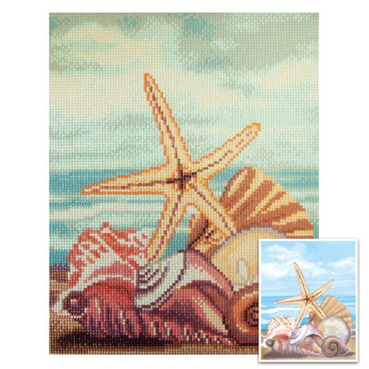 Craft artist Diamond art - Sea shells