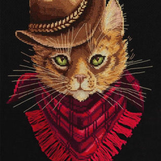 Borduurpakket Tom Outlaw