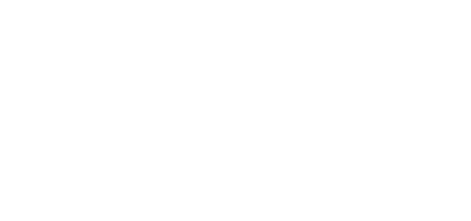ZARGAR RUGS