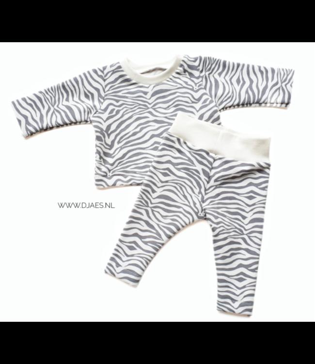 Set new born | Zebra