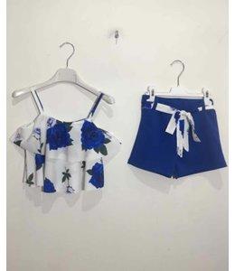 Blue flower set