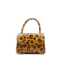 Cape Town - Leopard big