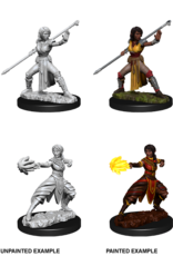 Wizkids D&D Nolzur's Marvelous Miniatures Half-Elf Monk Female