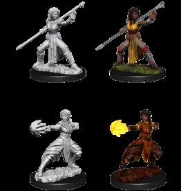 Wizkids D&D Nolzur's Marvelous Miniatures Half-Elf Monk Female