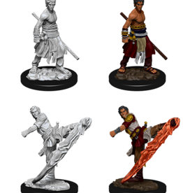 Wizkids D&D Nolzur's Marvelous Miniatures Half-Elf Monk Male