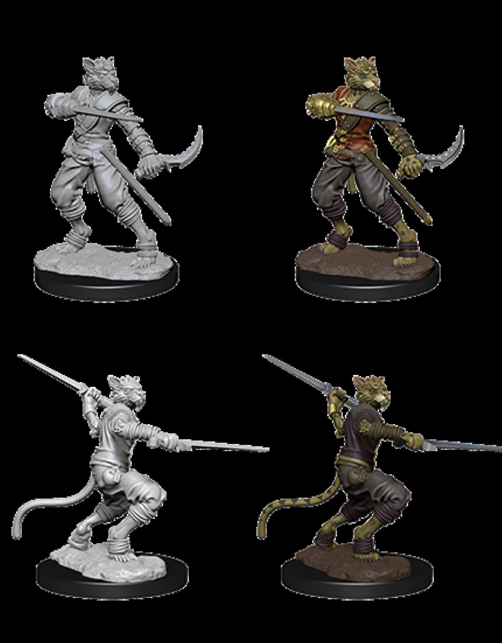 Wizkids D&D Nolzur's Marvelous Miniatures Tabaxi Rogue Male