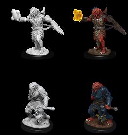 Wizkids D&D Nolzur's Marvelous Miniatures Dragonborn Paladin, Male 2