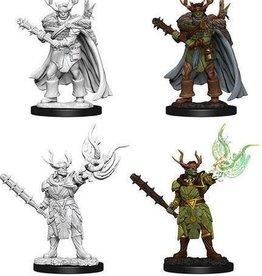 Wizkids Pathfinder Deep Cuts Half-Orc Druid Male