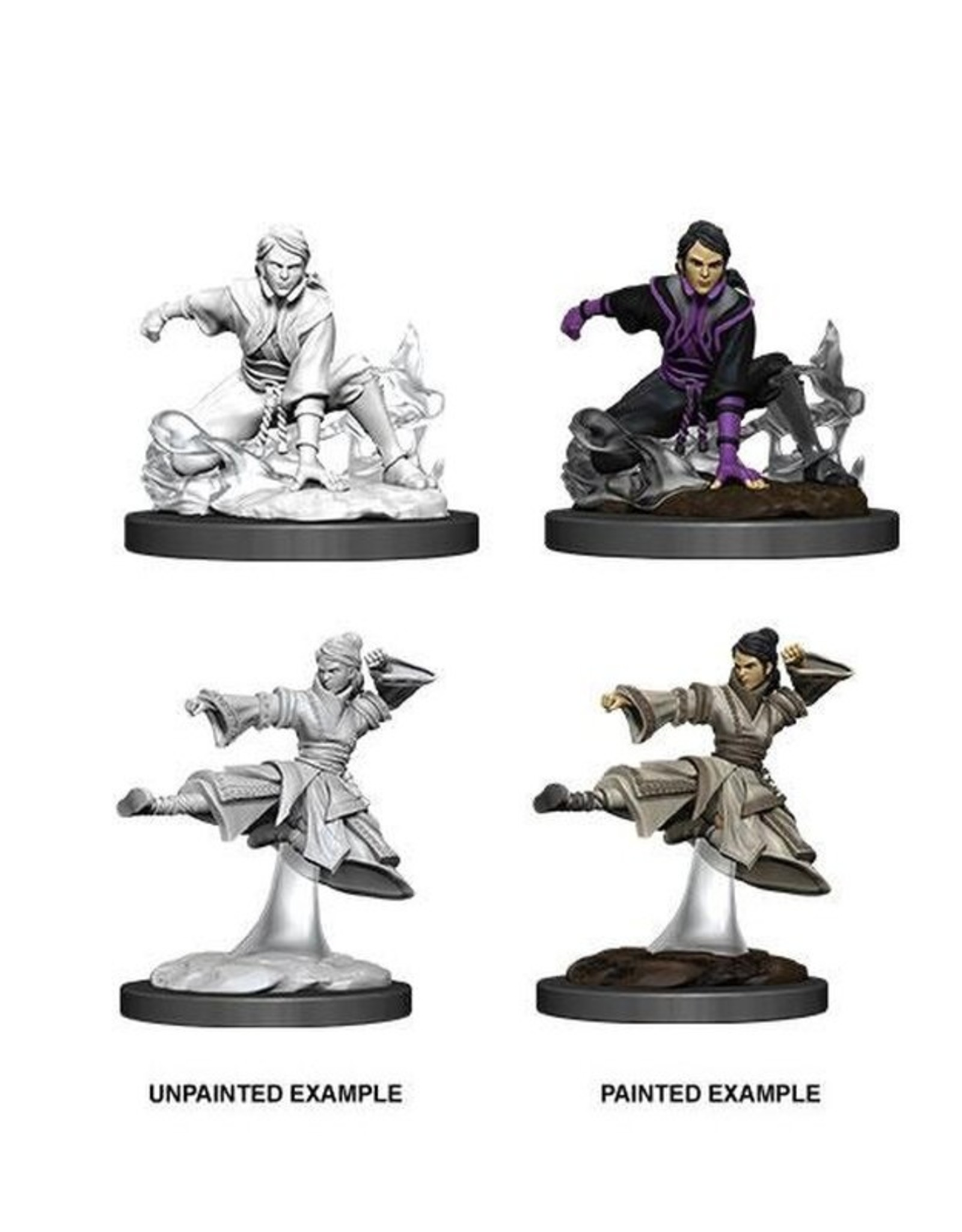 Wizkids D&D Nolzur's Marvelous Miniatures Human Monk Female 2