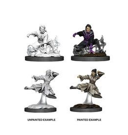 Wizkids D&D Nolzur's Marvelous Miniatures Human Monk Female 2