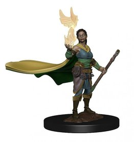 Wizkids D&D Icons of the Realms  Elf Druid, Female