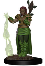 Wizkids D&D Icons of the Realms Human Druid, Female