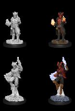 Wizkids D&D Nolzur's Marvelous Miniatures Tiefling Sorcerer Male 2