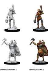 Wizkids D&D Nolzur's Marvelous Miniatures Human Barbarian Female 2