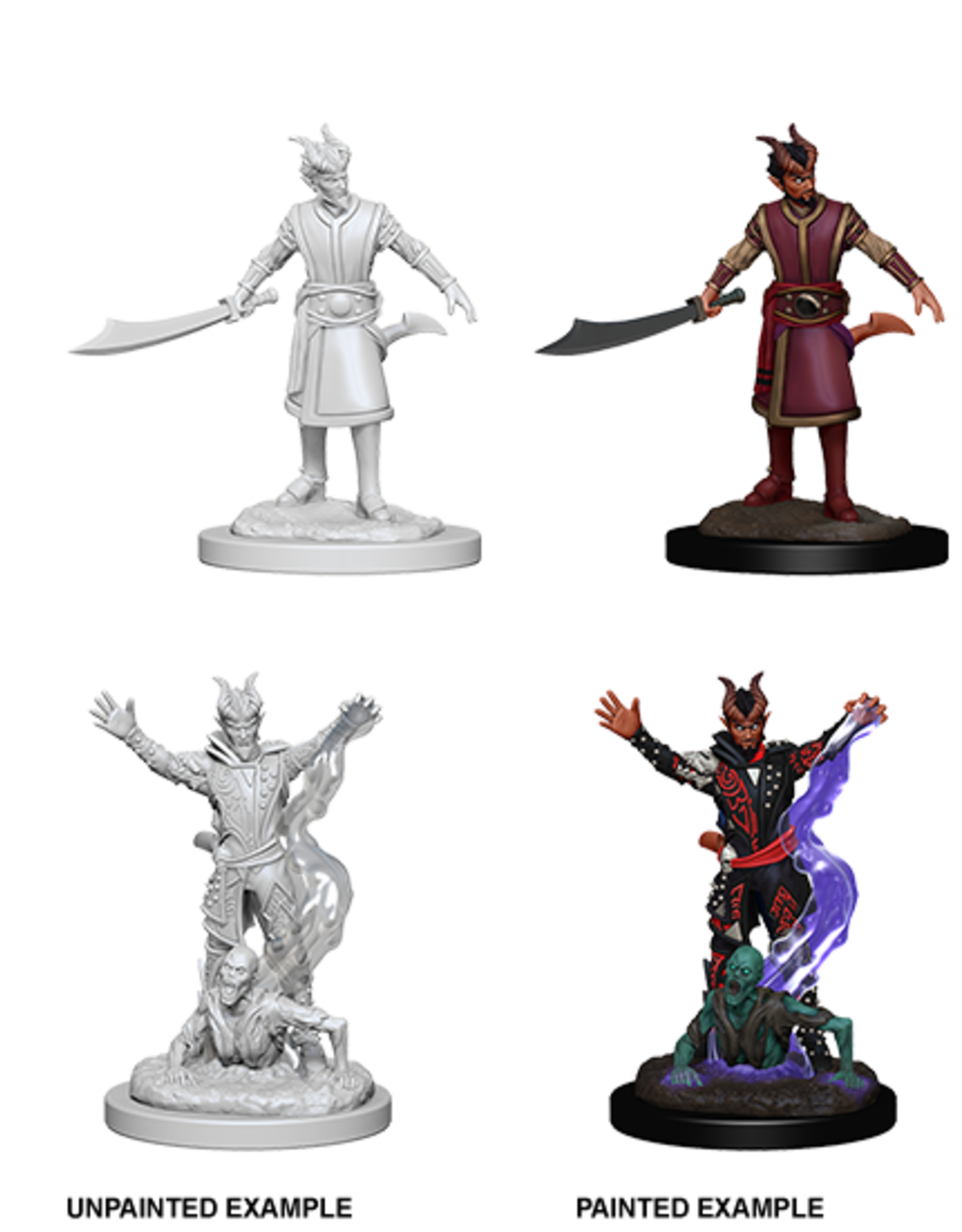 Wizkids D&D Nolzur's Marvelous Miniatures Tiefling Warlock Male