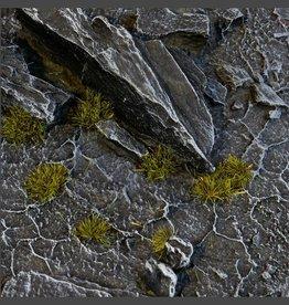 Gamers Grass Dark Moss Tufts Tiny (2mm)