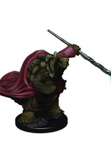 Wizkids D&D Icons of the Realms Tortle Monk, Male