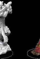 Wizkids D&D Nolzur's Marvelous Miniatures Efreeti