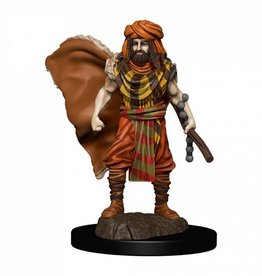 Wizkids D&D Icons of the Realms Human Druid, Male