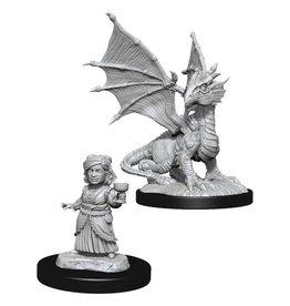 Wizkids D&D Nolzur's Marvelous Miniatures Silver Dragon Wyrmling