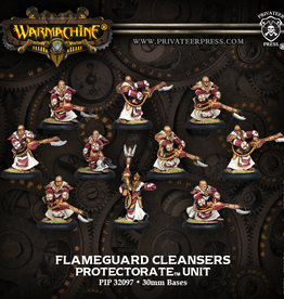 Privateer Press Flameguard Cleansers