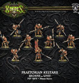 Privateer Press Praetorian Keltarii/Swordsmen