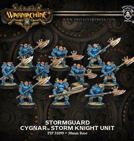 Privateer Press Stormguard/Storm Knights