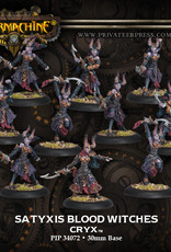Privateer Press Satyxis Blood Witches