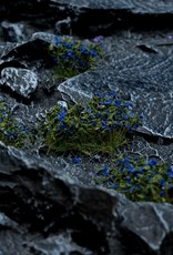 Gamers Grass Blue Flowers Wild
