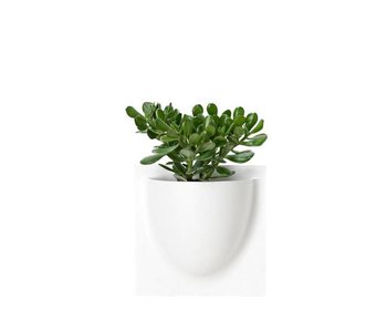 Vertiplants Wall Jar White