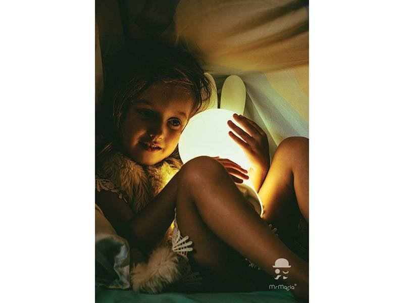 Mr. Maria Miffy / Nijntje First Light