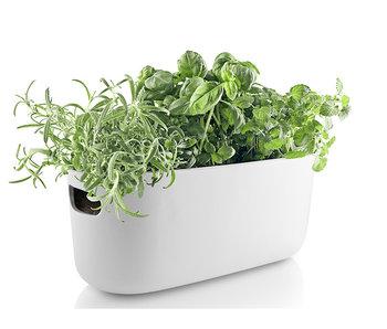 Eva Solo Self Watering Herb Organiser White