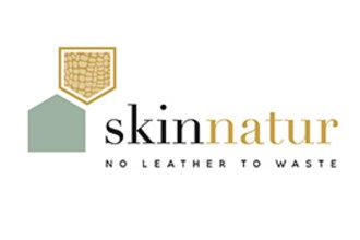 Skinnatur