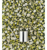 Stelton Original Flower Watering Can