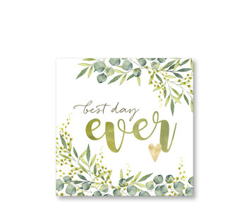 PPD Paper Napkins Best Day Ever 33/33