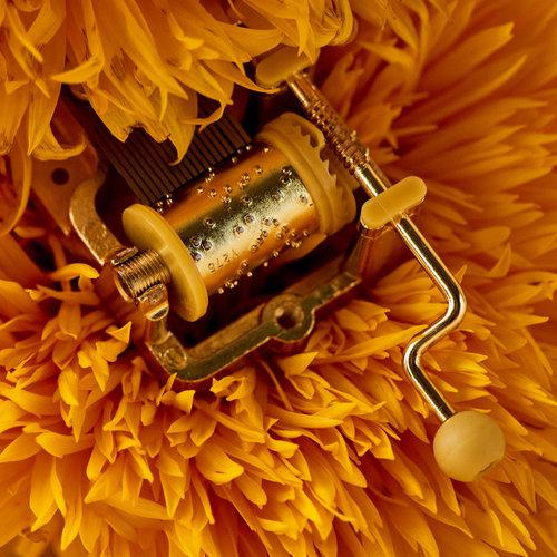 'Spin me around' draai-orgeltje Music box 'Imagine'