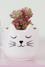 Sass & Belle Sass & Belle Cat's Whiskers planter mini wit
