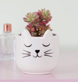 Sass & Belle Sass & Belle Cat's Whiskers planter mini wit