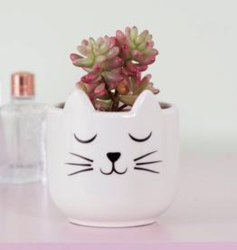 Sass & Belle Sass & Belle Cat's Whiskers planter mini